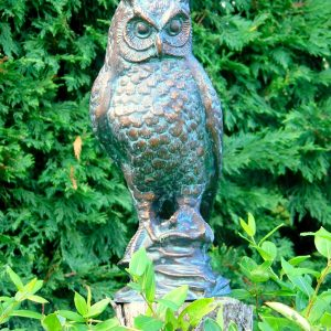 Cast Iron Long Eared Owl hand finished with an Antique Verde Bronze Finish